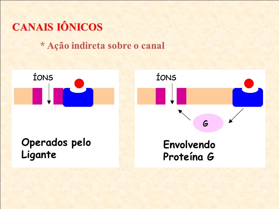 CANAIS IÔNICOS * Ação indireta sobre o canal ÍONS Operados pelo Ligante ÍONS G Envolvendo Proteína G