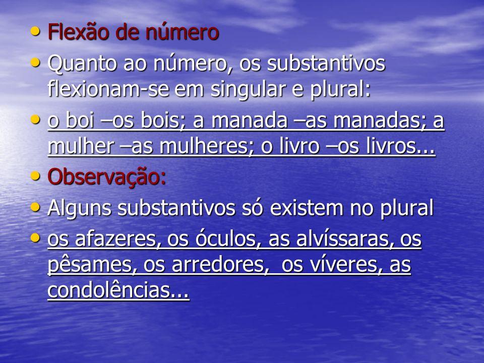 Flexão de número Flexão de número Quanto ao número, os substantivos flexionam-se em singular e plural: Quanto ao número, os substantivos flexionam-se