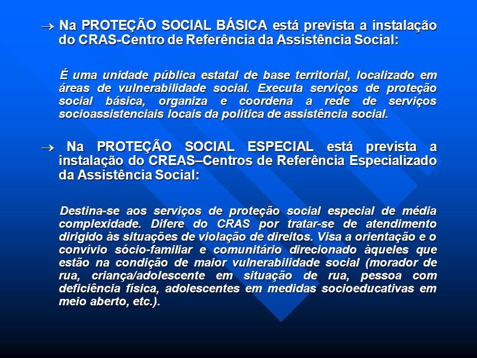 PROTEÇÕES AFIANÇADAS PELA PNAS: PROTEÇÃO SOCIAL BÁSICA: PROTEÇÃO SOCIAL BÁSICA: Voltada para a prevenção de situações de risco através do desenvolvime