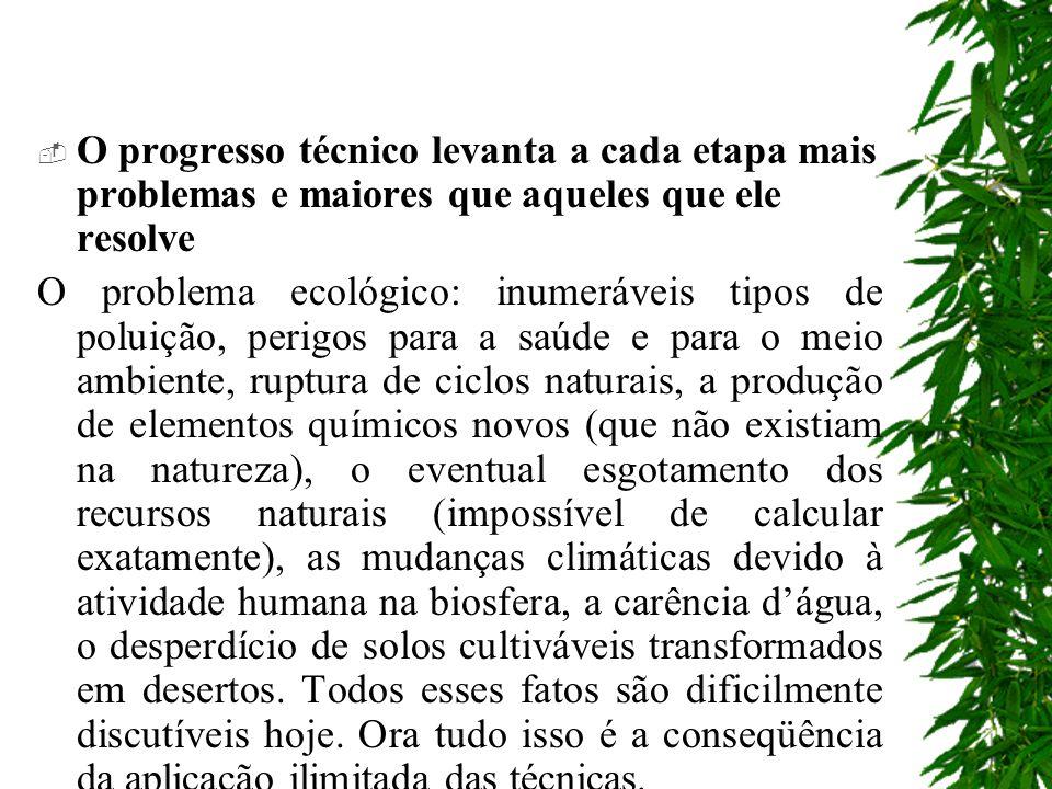 O progresso técnico levanta a cada etapa mais problemas e maiores que aqueles que ele resolve O problema ecológico: inumeráveis tipos de poluição, per
