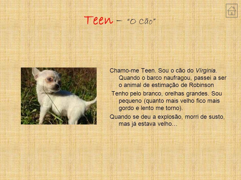 Teen – O Cão Chamo-me Teen.Sou o cão do Vírginia.