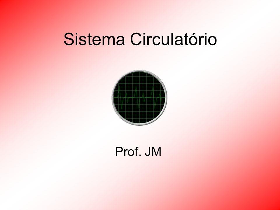 Sistema Circulatório Prof. JM