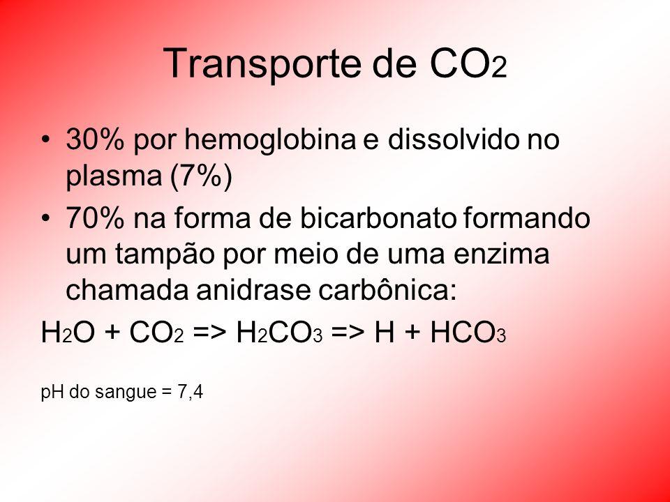 Transporte de CO 2 30% por hemoglobina e dissolvido no plasma (7%) 70% na forma de bicarbonato formando um tampão por meio de uma enzima chamada anidr