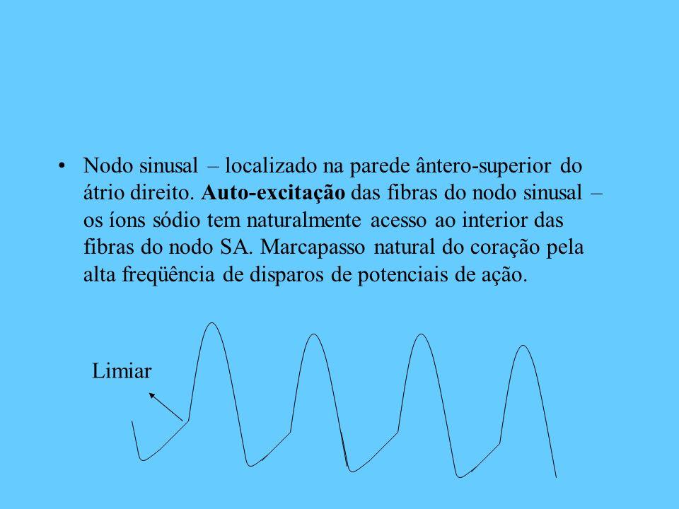 Nodo sinusal – localizado na parede ântero-superior do átrio direito. Auto-excitação das fibras do nodo sinusal – os íons sódio tem naturalmente acess