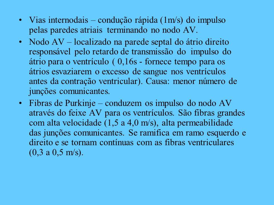Vias internodais – condução rápida (1m/s) do impulso pelas paredes atriais terminando no nodo AV. Nodo AV – localizado na parede septal do átrio direi