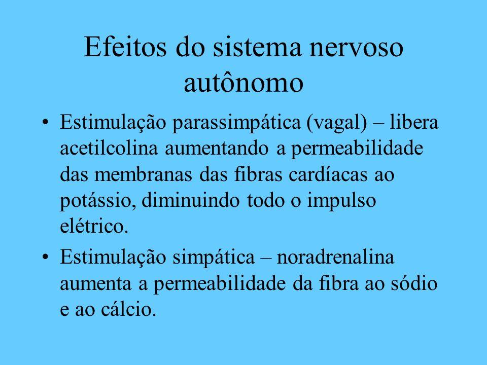 Efeitos do sistema nervoso autônomo Estimulação parassimpática (vagal) – libera acetilcolina aumentando a permeabilidade das membranas das fibras card