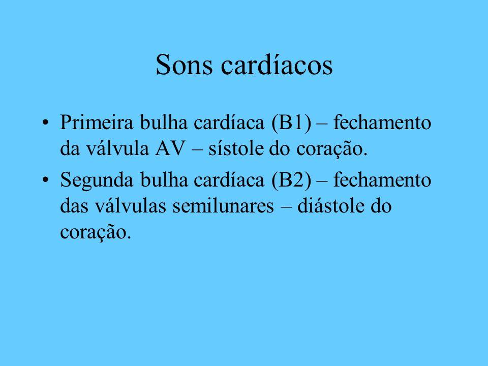 Sons cardíacos Primeira bulha cardíaca (B1) – fechamento da válvula AV – sístole do coração. Segunda bulha cardíaca (B2) – fechamento das válvulas sem