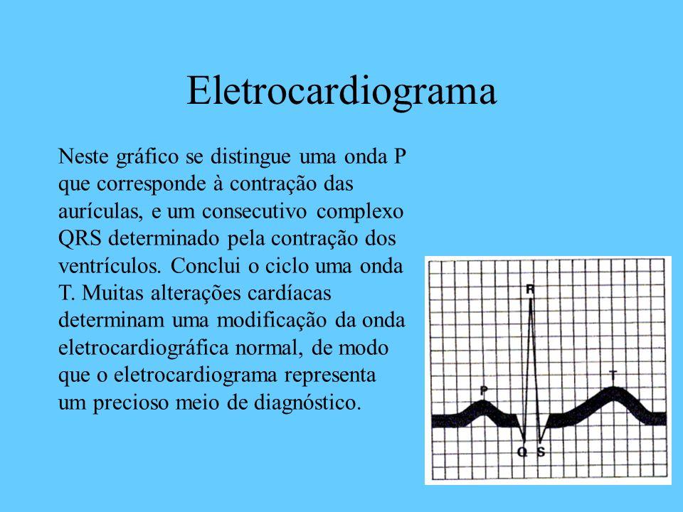 Eletrocardiograma Neste gráfico se distingue uma onda P que corresponde à contração das aurículas, e um consecutivo complexo QRS determinado pela cont