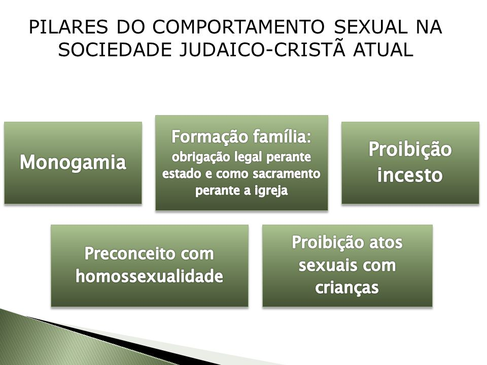 PILARES DO COMPORTAMENTO SEXUAL NA SOCIEDADE JUDAICO-CRISTÃ ATUAL