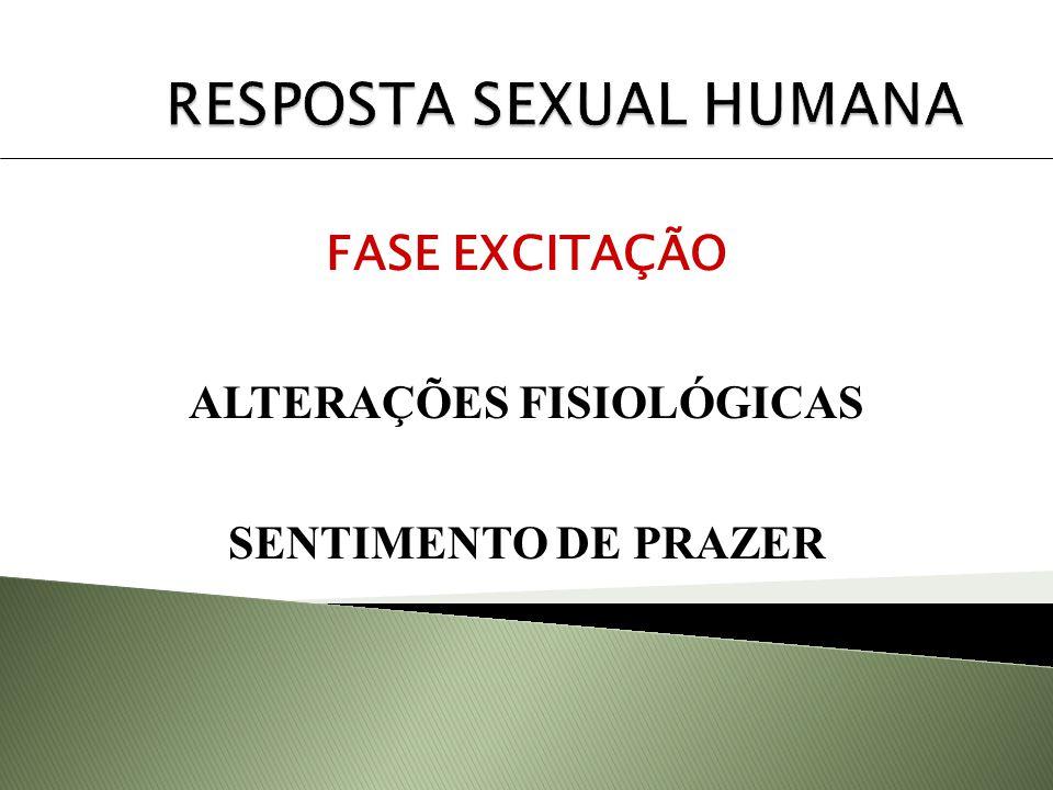 FASE EXCITAÇÃO ALTERAÇÕES FISIOLÓGICAS SENTIMENTO DE PRAZER