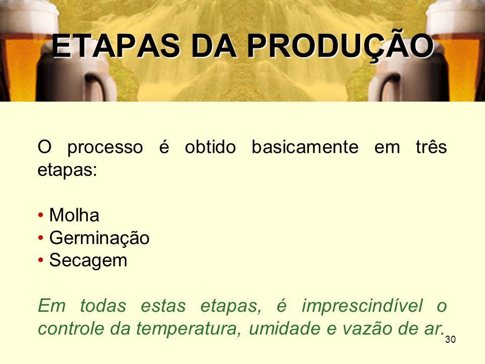 30 ETAPAS DA PRODUÇÃO O processo é obtido basicamente em três etapas: Molha Germinação Secagem Em todas estas etapas, é imprescindível o controle da t