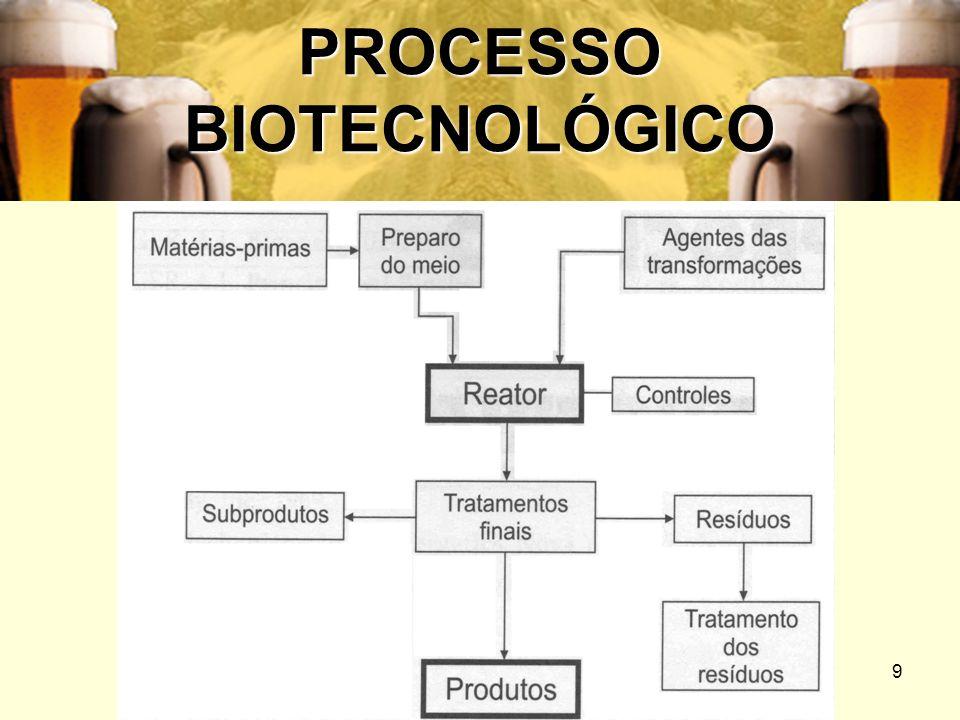 10 PROCESSO BIOTECNOLÓGICO Quando os agentes das transformações que ocorrem no reator são enzimas, ou células mortas ou inativadas (que neste caso servem como suporte das enzimas), o processo se chama enzimático.