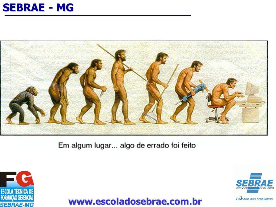 www.escoladosebrae.com.br 34 Como??? Porque me tornei empresário!