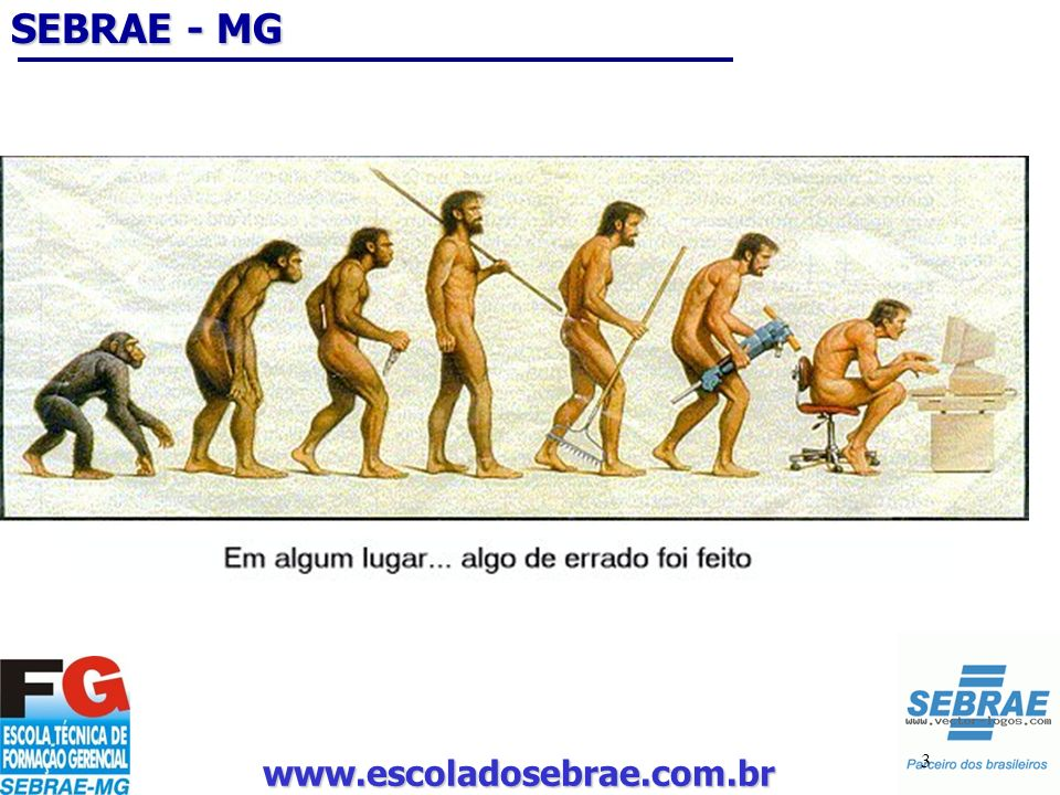 www.escoladosebrae.com.br 3 SEBRAE - MG