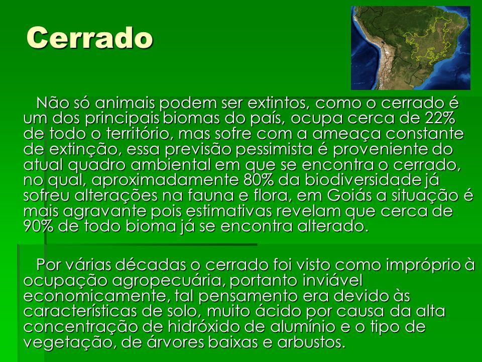 Cerrado Não só animais podem ser extintos, como o cerrado é um dos principais biomas do país, ocupa cerca de 22% de todo o território, mas sofre com a