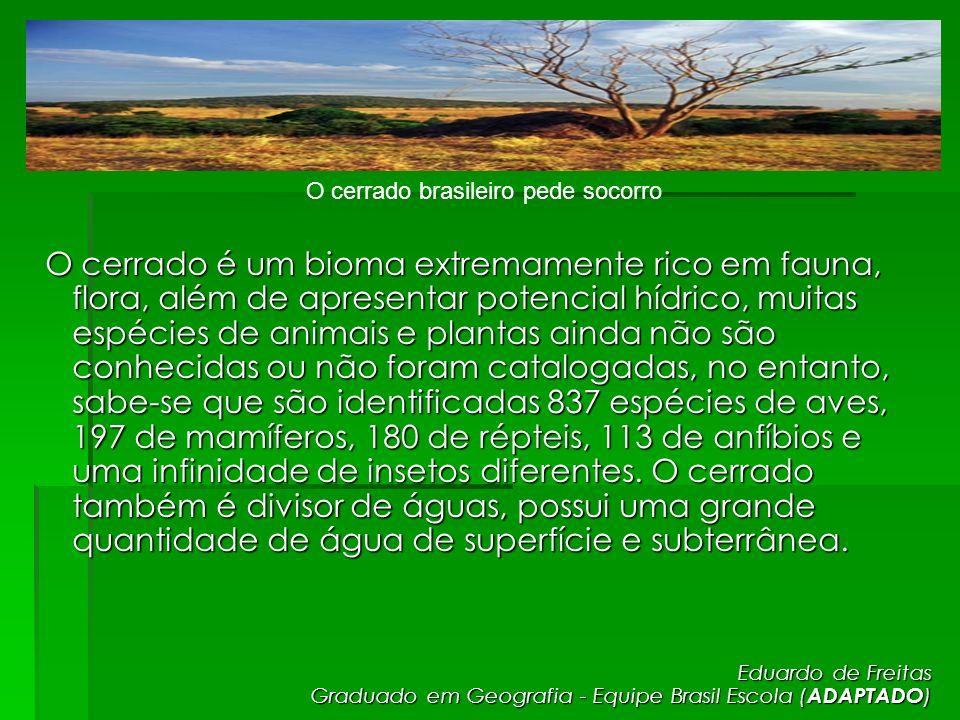 O cerrado é um bioma extremamente rico em fauna, flora, além de apresentar potencial hídrico, muitas espécies de animais e plantas ainda não são conhe
