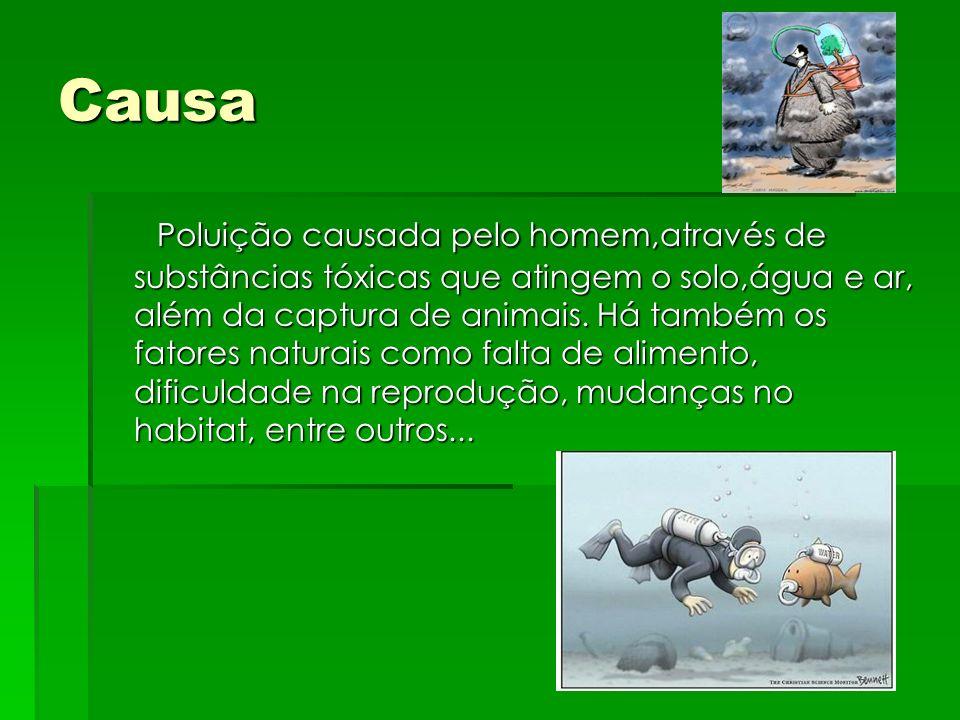Causa Poluição causada pelo homem,através de substâncias tóxicas que atingem o solo,água e ar, além da captura de animais. Há também os fatores natura