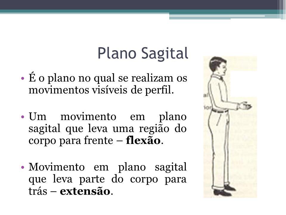 Plano Sagital É o plano no qual se realizam os movimentos visíveis de perfil. Um movimento em plano sagital que leva uma região do corpo para frente –