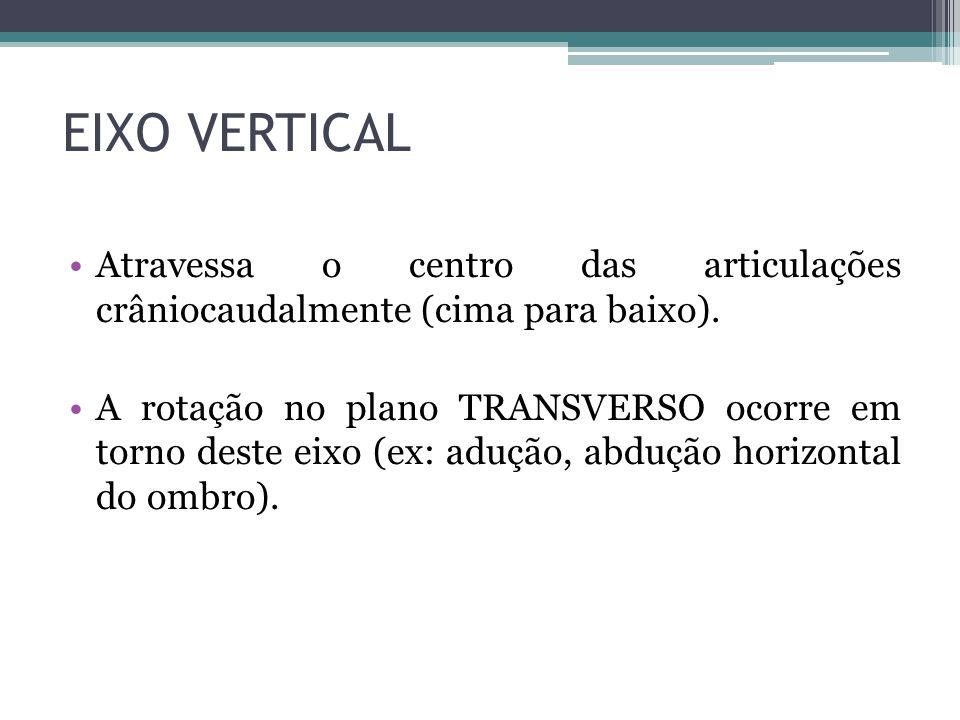 EIXO VERTICAL Atravessa o centro das articulações crâniocaudalmente (cima para baixo). A rotação no plano TRANSVERSO ocorre em torno deste eixo (ex: a