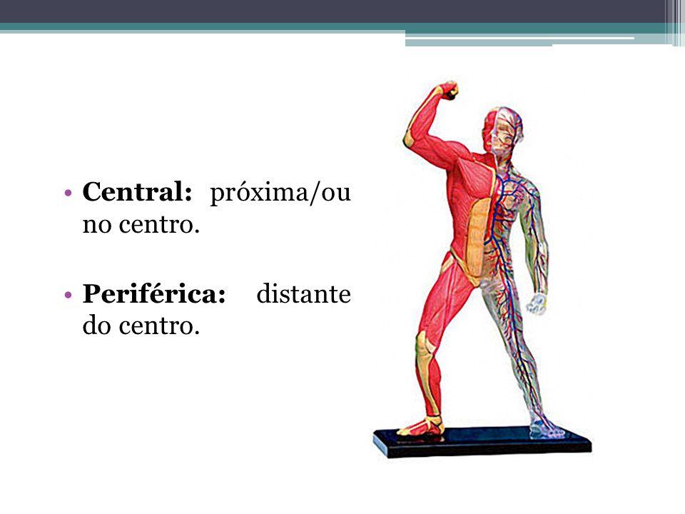 Central: próxima/ou no centro. Periférica: distante do centro.