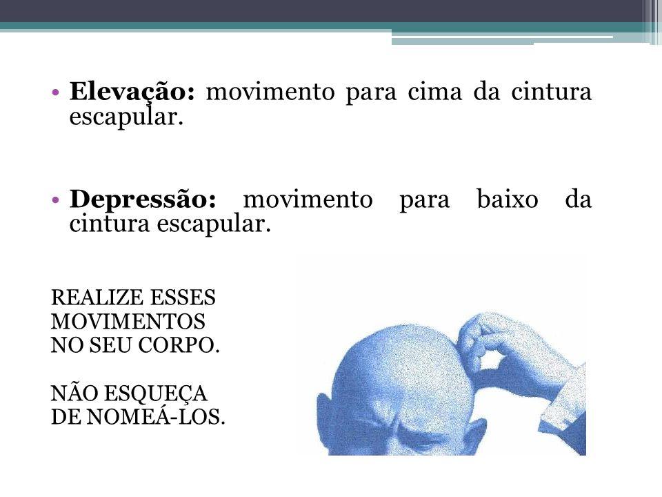 Elevação: movimento para cima da cintura escapular. Depressão: movimento para baixo da cintura escapular. REALIZE ESSES MOVIMENTOS NO SEU CORPO. NÃO E