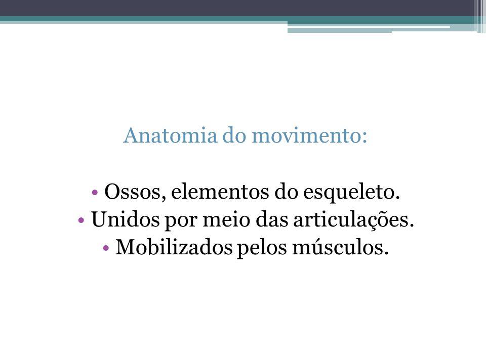 Anatomia do movimento: Ossos, elementos do esqueleto. Unidos por meio das articulações. Mobilizados pelos músculos.