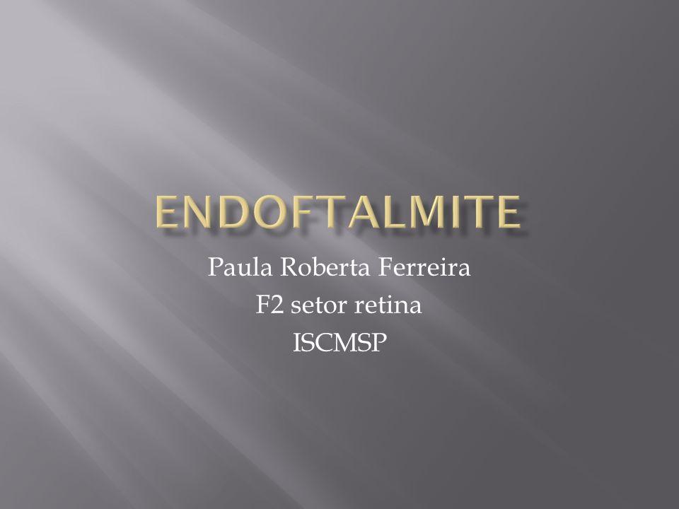 Paula Roberta Ferreira F2 setor retina ISCMSP