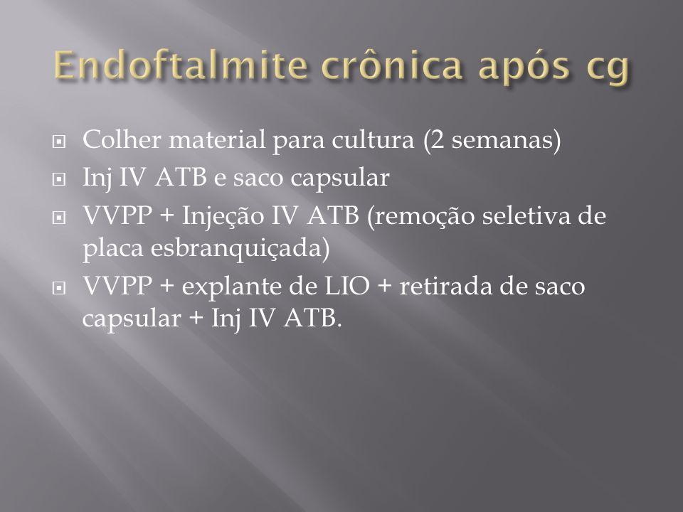 Colher material para cultura (2 semanas) Inj IV ATB e saco capsular VVPP + Injeção IV ATB (remoção seletiva de placa esbranquiçada) VVPP + explante de