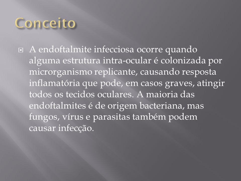 A endoftalmite infecciosa ocorre quando alguma estrutura intra-ocular é colonizada por microrganismo replicante, causando resposta inflamatória que po