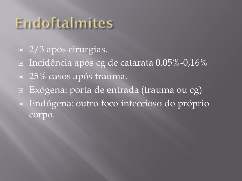 2/3 após cirurgias. Incidência após cg de catarata 0,05%-0,16% 25% casos após trauma. Exógena: porta de entrada (trauma ou cg) Endógena: outro foco in