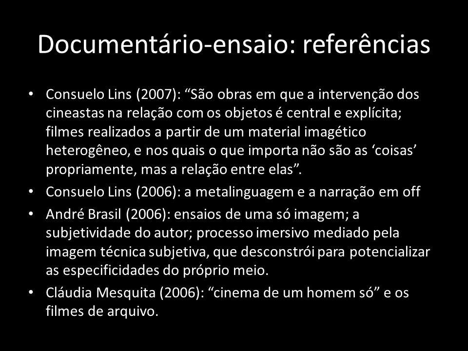 Documentário-ensaio: referências Consuelo Lins (2007): São obras em que a intervenção dos cineastas na relação com os objetos é central e explícita; filmes realizados a partir de um material imagético heterogêneo, e nos quais o que importa não são as coisas propriamente, mas a relação entre elas.