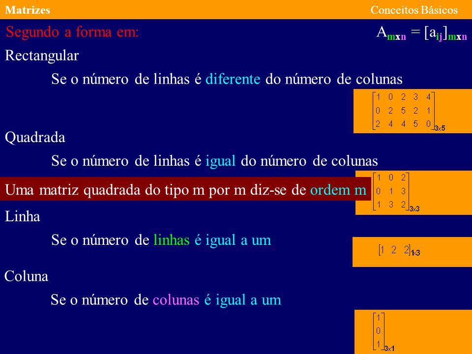 MatrizesConceitos Básicos A mxn = [a ij ] mxn As matrizes podem ser classificadas segundo: A natureza dos elementos A forma