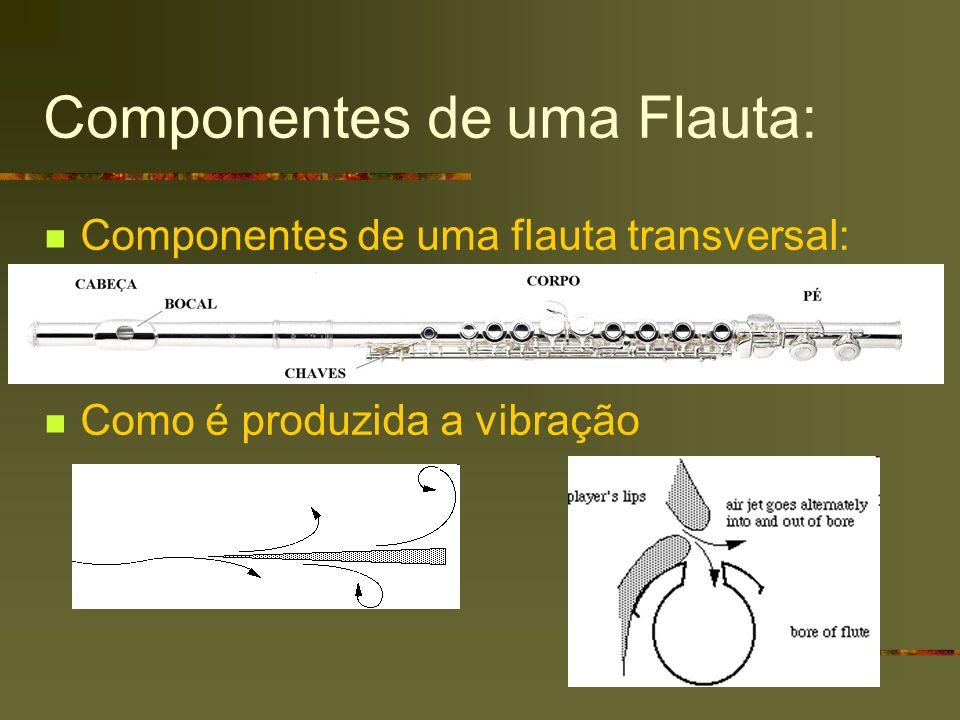 Componentes de uma Flauta: Componentes de uma flauta transversal: Como é produzida a vibração