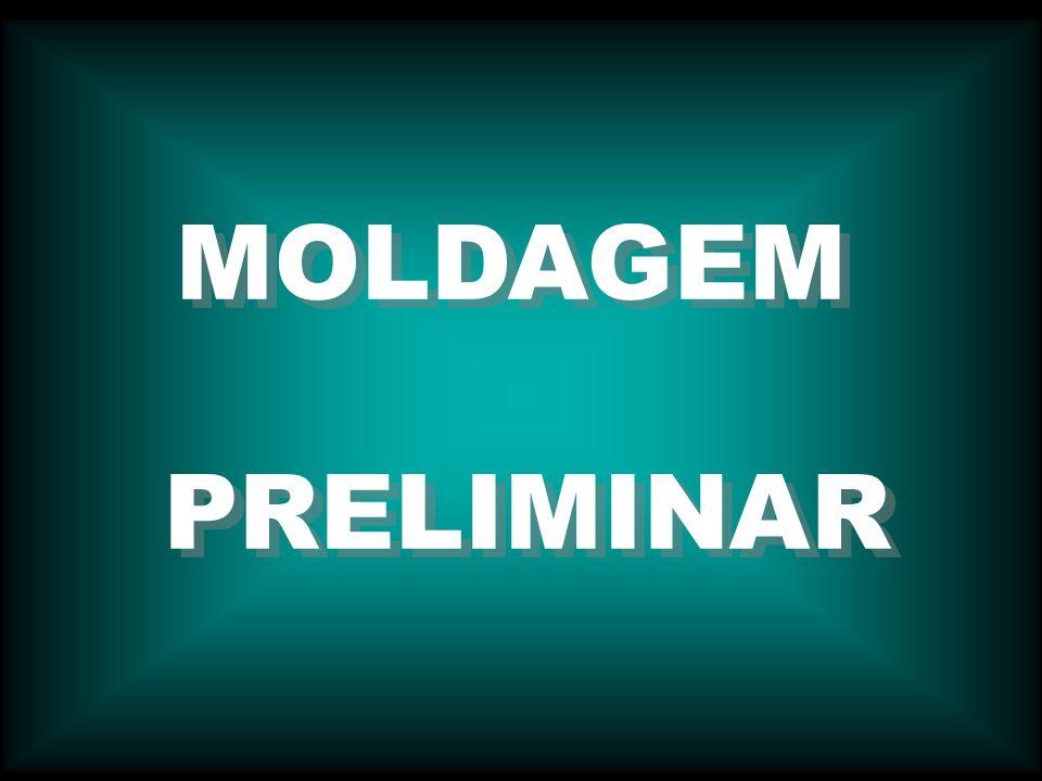 MOLDAGEM PRELIMINAR MOLDAGEM PRELIMINAR