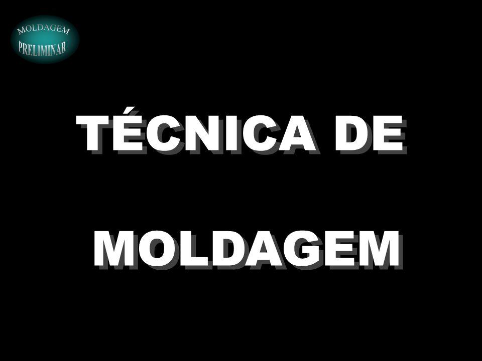TÉCNICA DE MOLDAGEM TÉCNICA DE MOLDAGEM