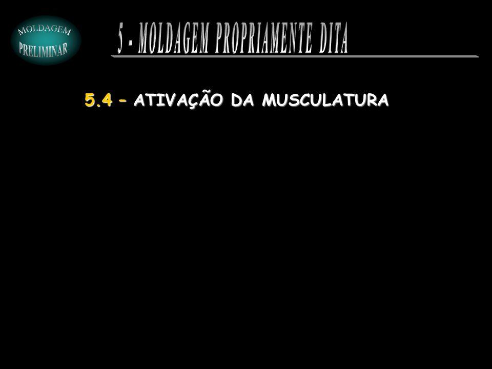 5.4 – ATIVAÇÃO DA MUSCULATURA