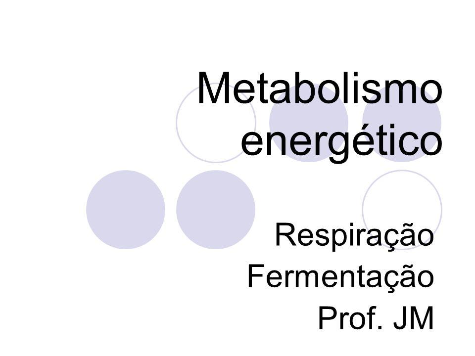 Metabolismo energético Respiração Fermentação Prof. JM