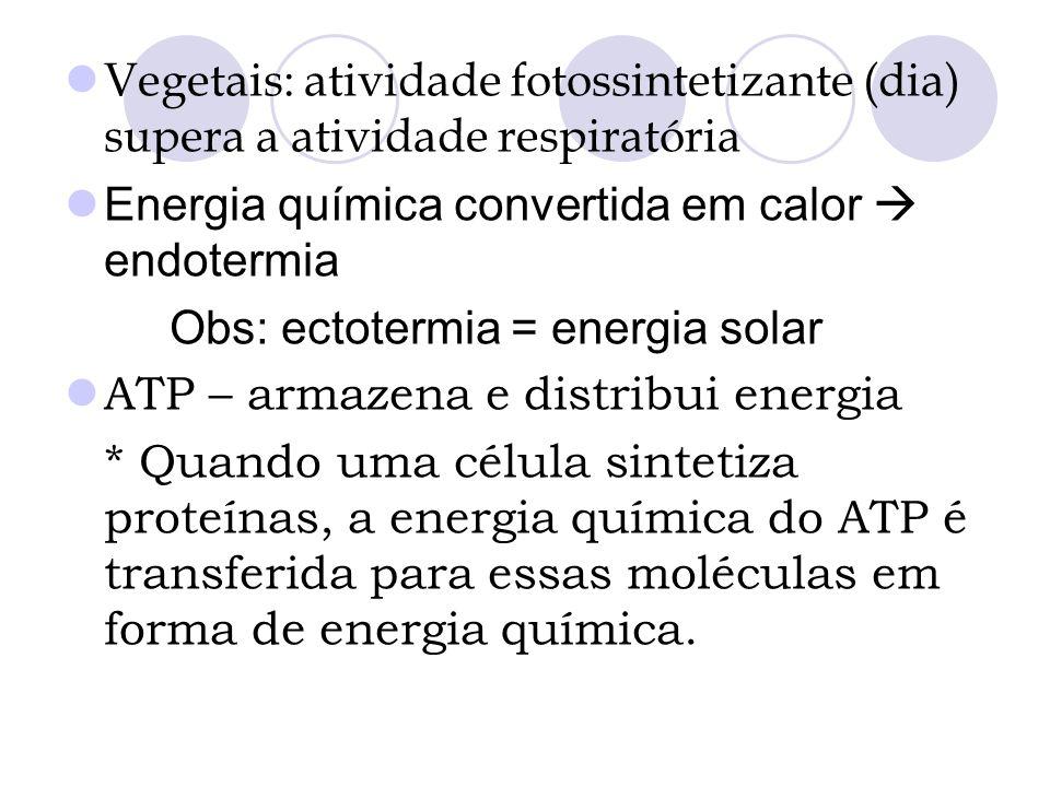 Vegetais: atividade fotossintetizante (dia) supera a atividade respiratória Energia química convertida em calor endotermia Obs: ectotermia = energia s
