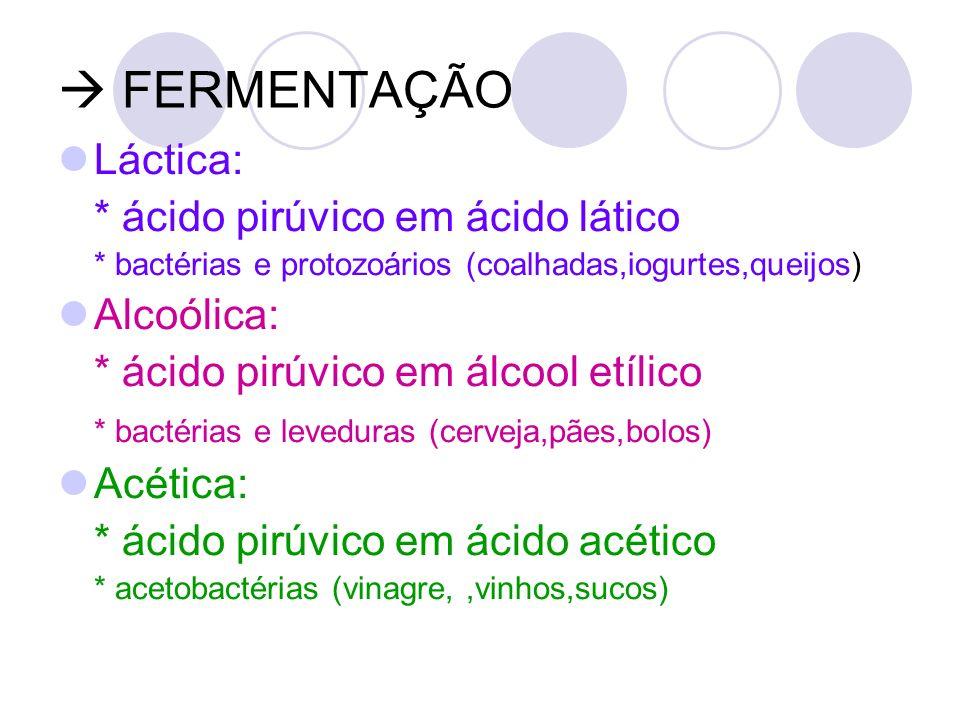 FERMENTAÇÃO Láctica: * ácido pirúvico em ácido lático * bactérias e protozoários (coalhadas,iogurtes,queijos) Alcoólica: * ácido pirúvico em álcool et