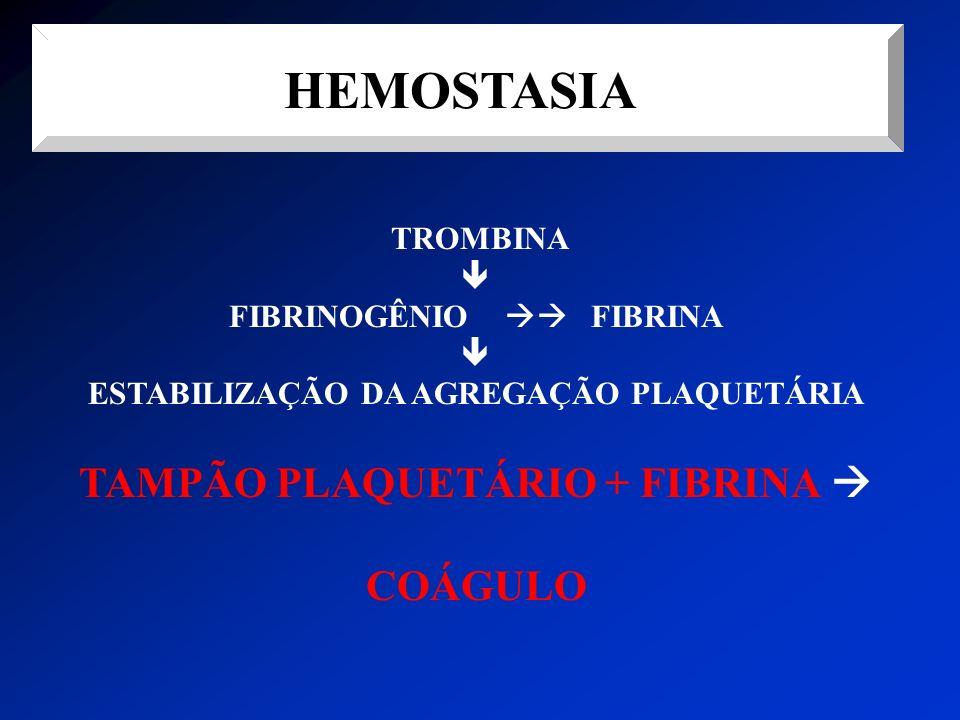 HEMOSTASIA TROMBINA FIBRINOGÊNIO FIBRINA ESTABILIZAÇÃO DA AGREGAÇÃO PLAQUETÁRIA TAMPÃO PLAQUETÁRIO + FIBRINA COÁGULO