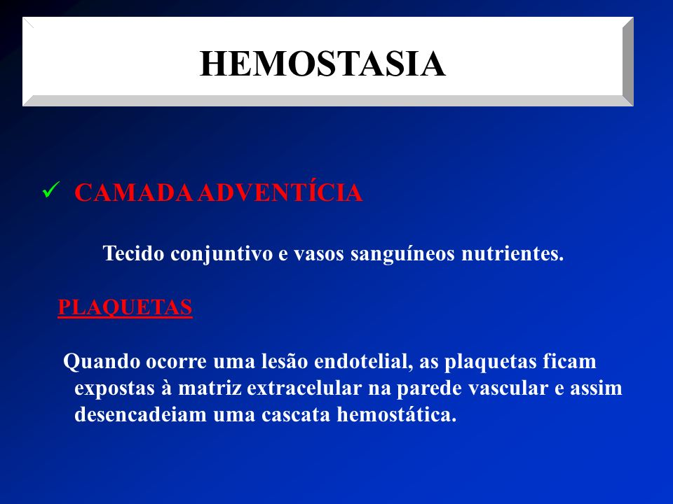 HEMOSTASIA CAMADA ADVENTÍCIA Tecido conjuntivo e vasos sanguíneos nutrientes. PLAQUETAS Quando ocorre uma lesão endotelial, as plaquetas ficam exposta