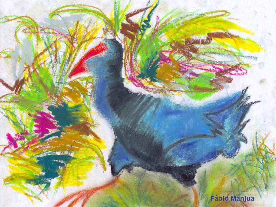 Quando se dirigia para o segundo local apontado por Luna, encontrou um casal de galinhas sultanas a almoçar, no sapal da laguna. …