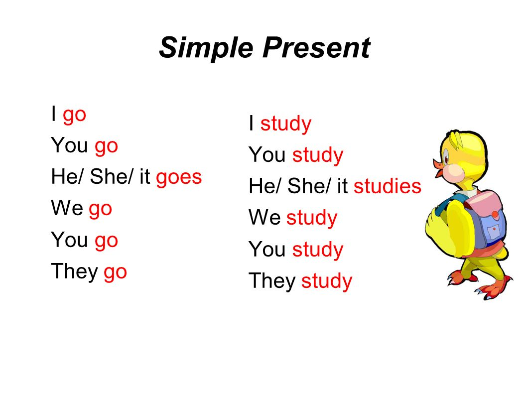 Simple Present I go You go He/ She/ it goes We go You go They go I study You study He/ She/ it studies We study You study They study