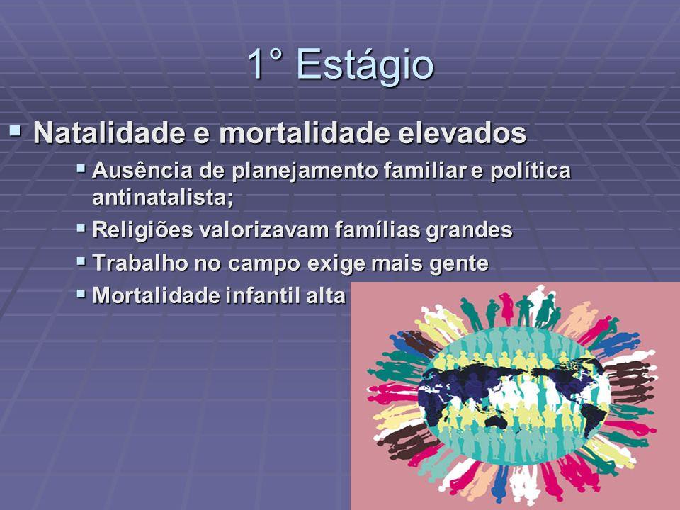1° Estágio Natalidade e mortalidade elevados Natalidade e mortalidade elevados Ausência de planejamento familiar e política antinatalista; Ausência de
