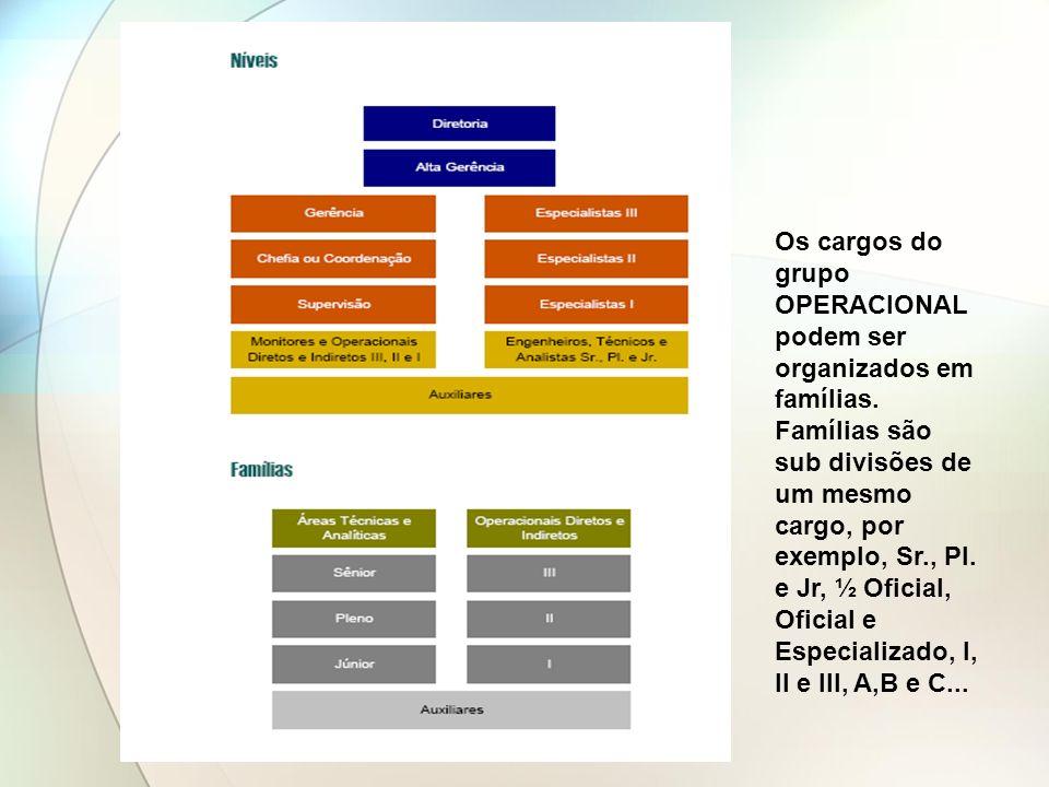Os cargos do grupo OPERACIONAL podem ser organizados em famílias. Famílias são sub divisões de um mesmo cargo, por exemplo, Sr., Pl. e Jr, ½ Oficial,