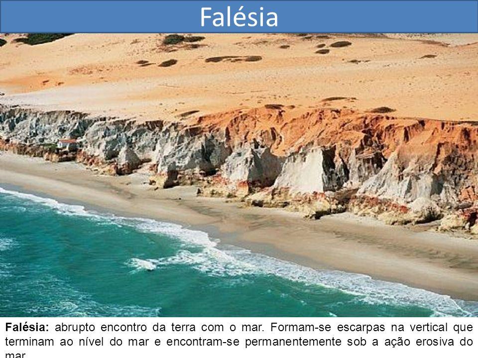 Falésia Falésia: abrupto encontro da terra com o mar. Formam-se escarpas na vertical que terminam ao nível do mar e encontram-se permanentemente sob a