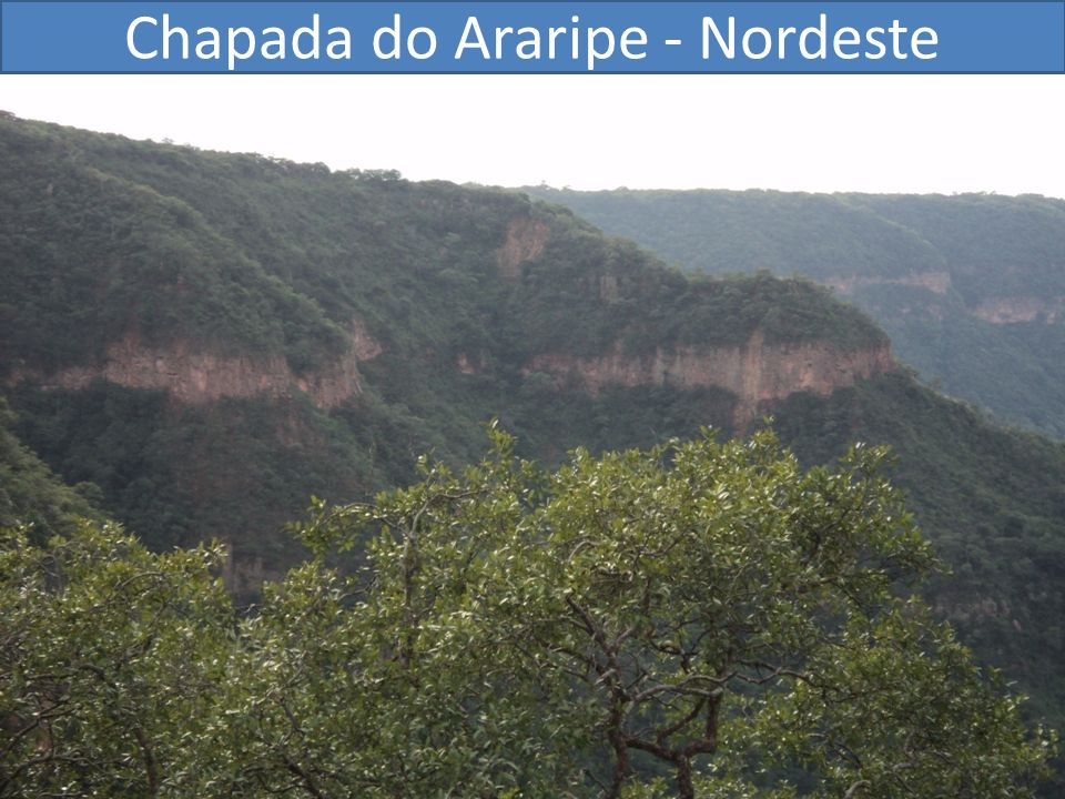Chapada do Araripe - Nordeste