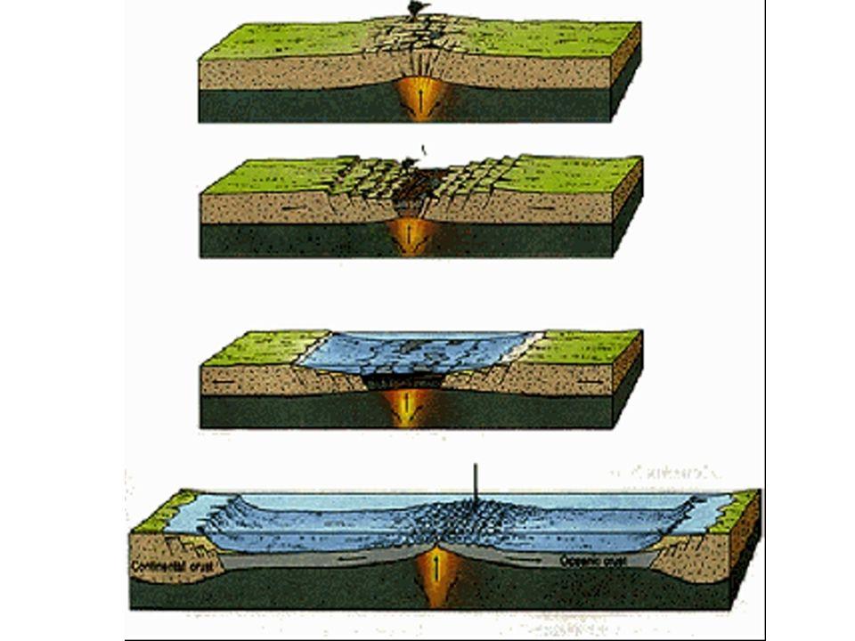 Teoria das Placas Tectônicas - contorno dos continentes - fósseis - idade das rochas - rochas com registro de inversão magnética