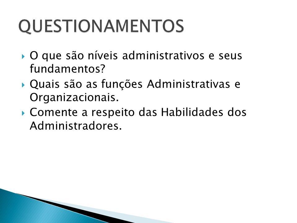 O que são níveis administrativos e seus fundamentos? Quais são as funções Administrativas e Organizacionais. Comente a respeito das Habilidades dos Ad