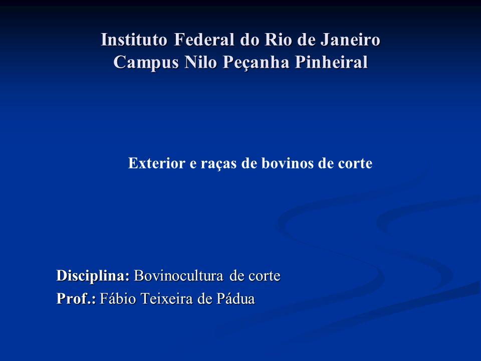 Instituto Federal do Rio de Janeiro Campus Nilo Peçanha Pinheiral Disciplina: Bovinocultura de corte Prof.: Fábio Teixeira de Pádua Exterior e raças de bovinos de corte